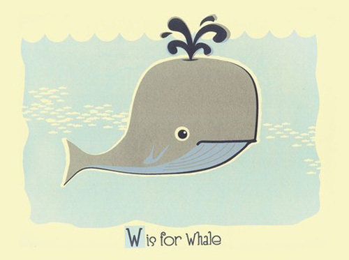 5w_for_whale