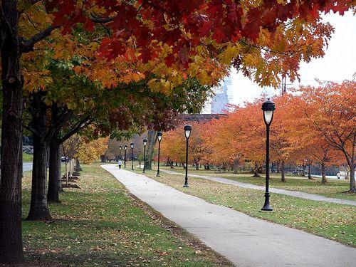 Walk along Kelly Drive