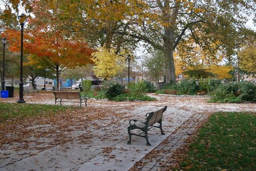 Jefferson-sq-park-fallweb-006
