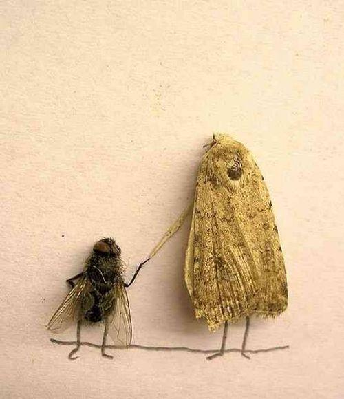 Dead_flies_art_131